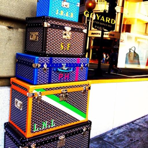 Mongram Luggage